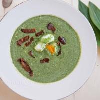 Bärlauch Brennessel Suppe
