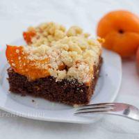 Schoko Marillenkuchen mit Streusel
